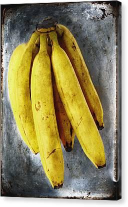 Fresh Bananas Canvas Print by Skip Nall