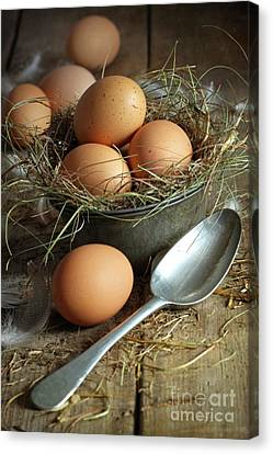 Fresh Brown Eggs In Old Tin Container With Spoon  Canvas Print by Sandra Cunningham