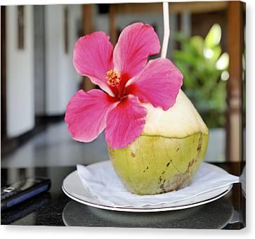 Fresh Coconut Milk Cocktail Canvas Print by Kantilal Patel