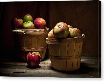 Fresh From The Orchard IIi Canvas Print by Tom Mc Nemar