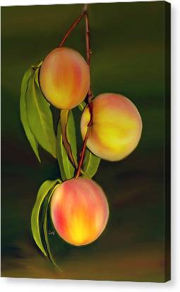 Canvas Print featuring the photograph Fresh Fruit by Sami Martin