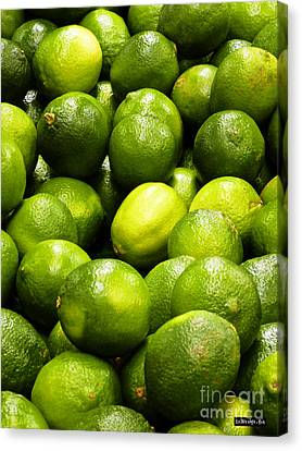 Fresh Limes Canvas Print by Methune Hively