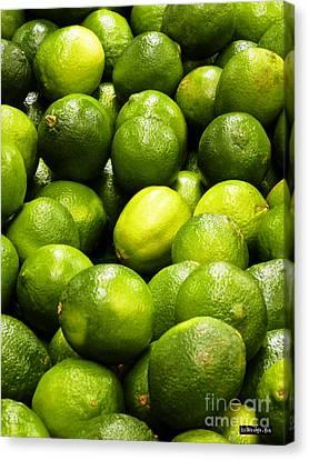 Fresh Limes Canvas Print