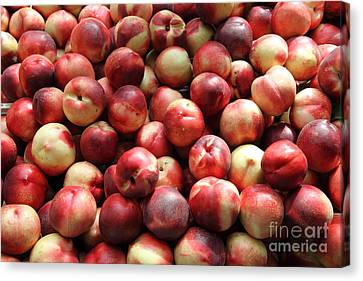 Fresh Nectarines - 5d17813 Canvas Print by Wingsdomain Art and Photography