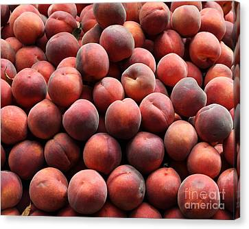 Fresh Peaches - 5d17816 Canvas Print by Wingsdomain Art and Photography