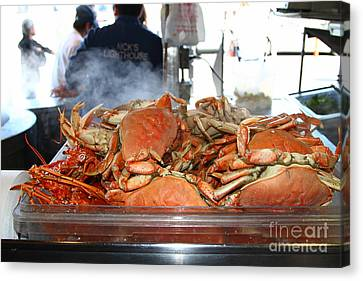 Freshly Cooked Steaming Hot Dungeness Crabs At Fishermans Wharf . San Francisco California . 7d14461 Canvas Print by Wingsdomain Art and Photography
