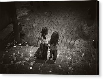 Friends Canvas Print by Tom Bell