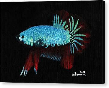 Betta Canvas Print - Frilled Blue Moonstone by Kayleigh Semeniuk