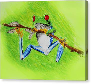 Frog Canvas Print by Serene Maisey