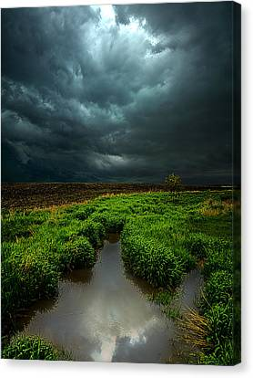 From Above Canvas Print by Phil Koch