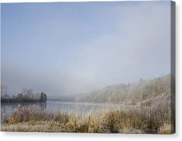 Frost On The Tall Grass Along The Shore Canvas Print by Susan Dykstra