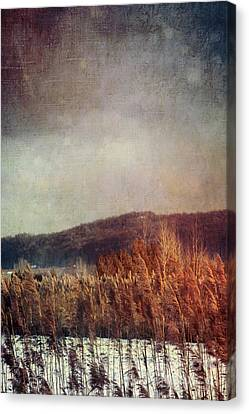 Snow Scene Canvas Print - Frosty Field In Late Winter Afternoon by Sandra Cunningham