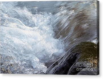 Froth Canvas Print by Sharon Talson