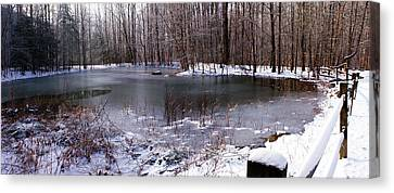 Frozen Head Pond Canvas Print by Paul Mashburn