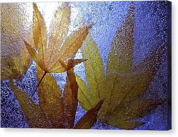 Canvas Print featuring the photograph Frozen Leaves by Scott Holmes