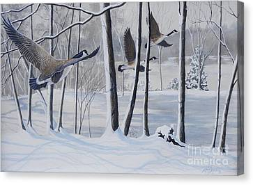 Frozen Over  Sold Prints Available Canvas Print