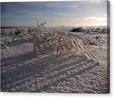 Frozen Riviere Des Mille Iles - Qc Canvas Print by Juergen Weiss