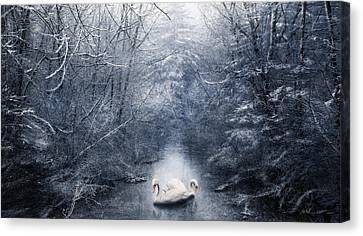 Frozen Time Canvas Print by Svetlana Sewell