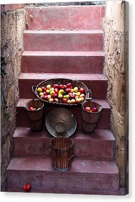 Fruit Basket Canvas Print by Kelly Jones