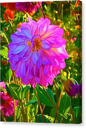 Canvas Print featuring the photograph Fuchsia Delight by Ken Stanback
