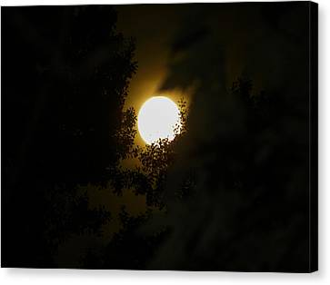 Canvas Print featuring the photograph Full Moon by Ester  Rogers
