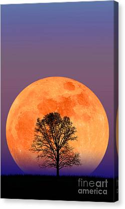 Full Moon Canvas Print by Larry Landolfi and Photo Researchers