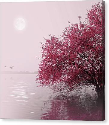 Full Moon On The Lake Canvas Print by Philippe Sainte-Laudy Photography