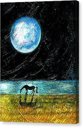 Full Moon On The Seashore Canvas Print by Ion vincent DAnu