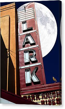 Meadowlark Canvas Print - Full Moon Over The Lark - Larkspur California - 5d18489 by Wingsdomain Art and Photography