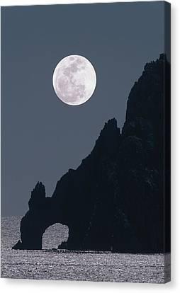 Sea Moon Full Moon Canvas Print - Full Moon Rising Over A Coastal Cliff by David Nunuk