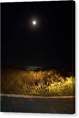 Full Moon With Golden Beach Glow  Canvas Print by Patricia Taylor