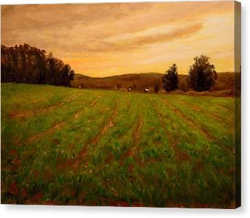 Furrowed Field Canvas Print