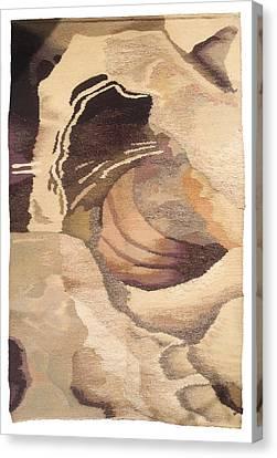 Galaxy Canvas Print by Dora Stoilova Zlatan Stoilov