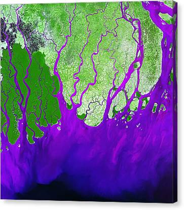 Ganges Delta Canvas Print