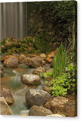 Canvas Print featuring the photograph Garden Falls by Coby Cooper