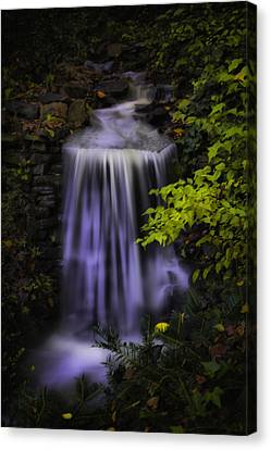 Canvas Print featuring the photograph Garden Falls by Lynne Jenkins
