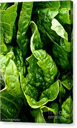 Garden Fresh Canvas Print by Susan Herber