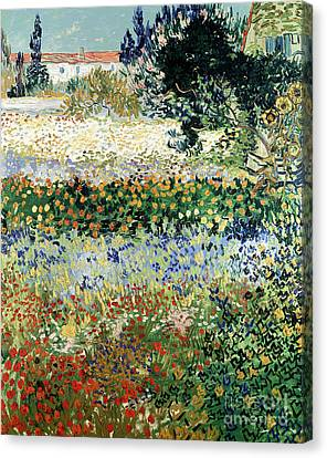 Garden In Bloom Canvas Print by Vincent Van Gogh