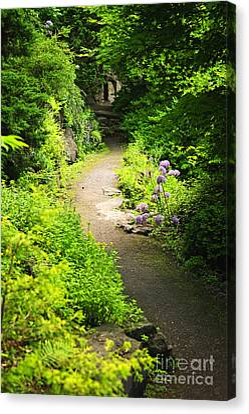 Lush Foliage Canvas Print - Garden Path by Elena Elisseeva