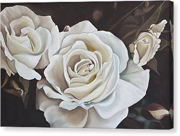 White Gardenia Canvas Print - Gardenias  by Judy  Hilton