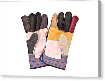 Gardening Gloves Canvas Print