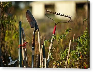 Gardening Tools Canvas Print by John Greim