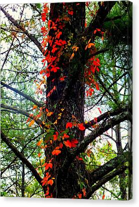 Garland Of Autumn Canvas Print by Karen Wiles