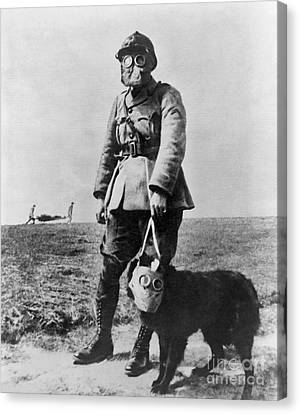 Working Dog Canvas Print - Gas Masks In Wwi 1914-18 by Library of Congress