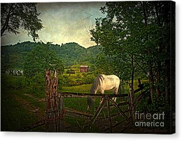Country Scene Canvas Print - Gate To The Past by Lianne Schneider