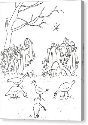 Geese In The Garden Canvas Print by Vass Eva Rozsa