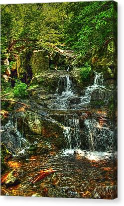 Gentle Falls Canvas Print by Dan Stone