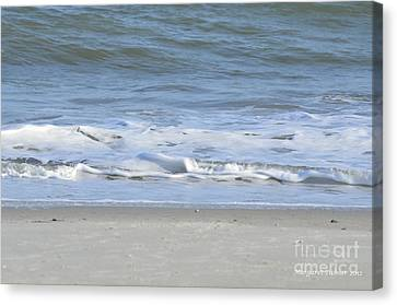 Gentle Tides Canvas Print by Margaret Palmer