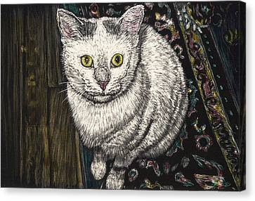 Georgie The Cat Canvas Print by Robert Goudreau