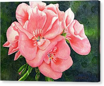 Geraniums Canvas Print by Debra Spinks
